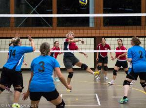 Volleyballseniorinnen starten in die Meisterschaft - Fotos
